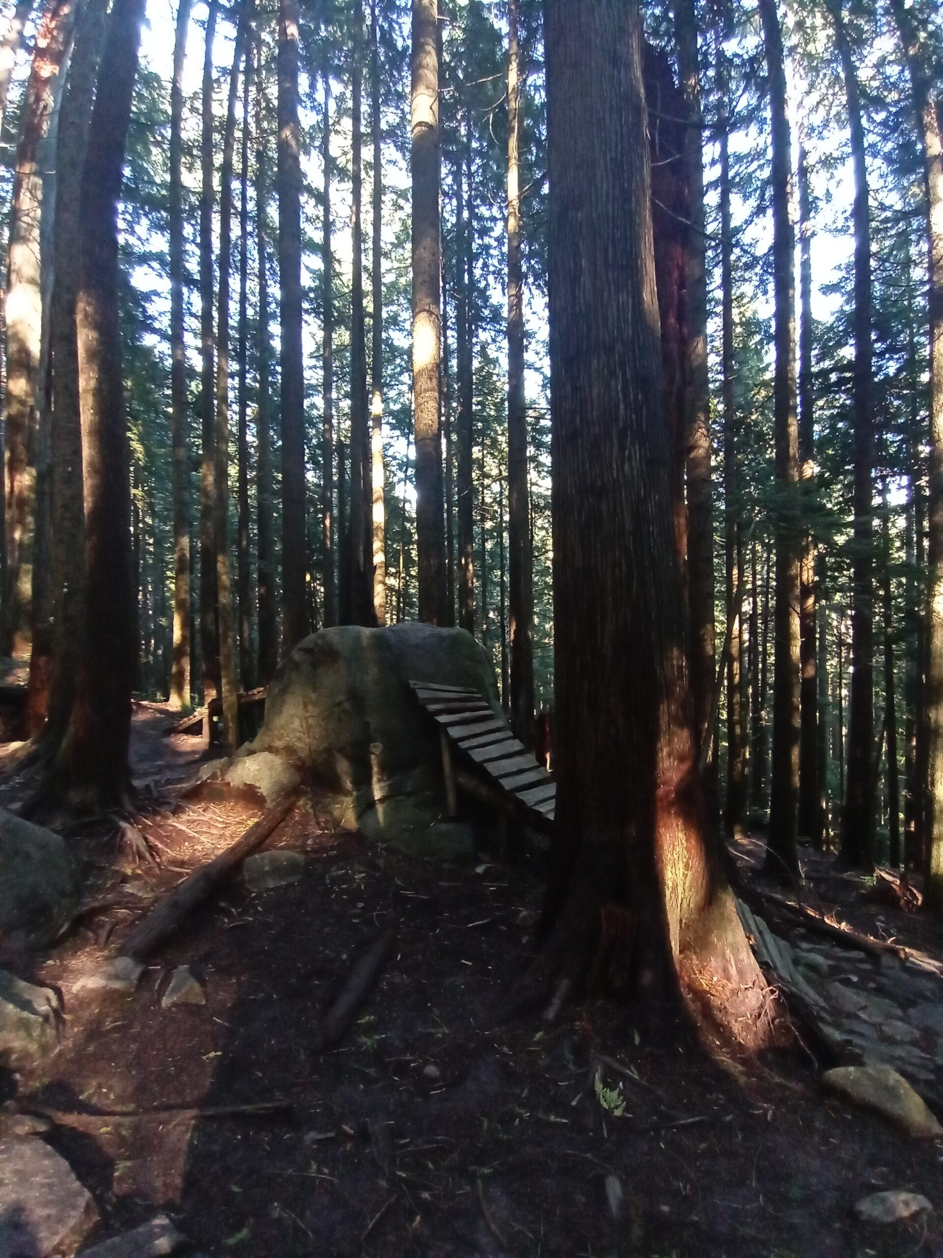 mont Fromme